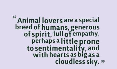 085dd5b17055a36523e0fb4ca8e6c57d--animal-lover-quotes-pet-quotes